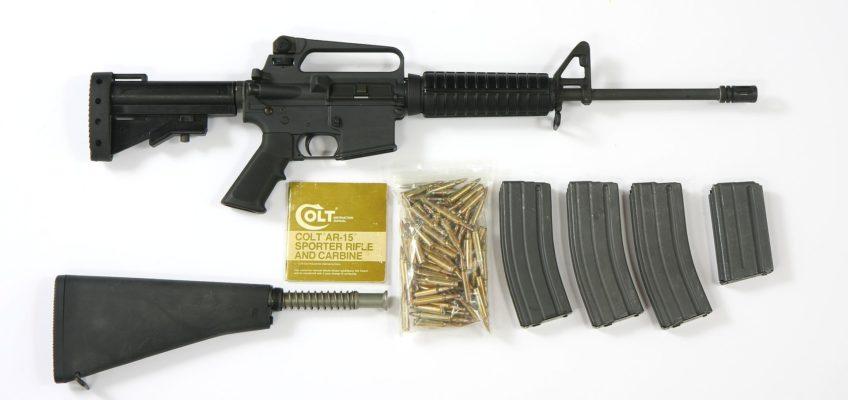 Colt AR-15--AR-10-.308