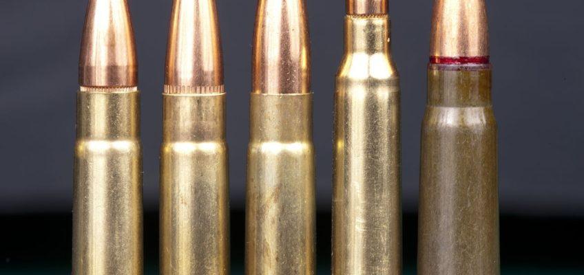 Ar15 Ar10 .308 Calibers
